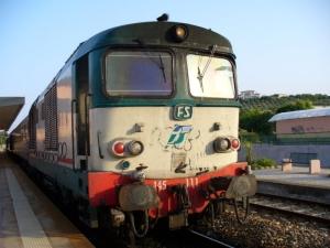 trenoo
