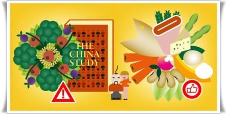 china-study_699x366 (1)