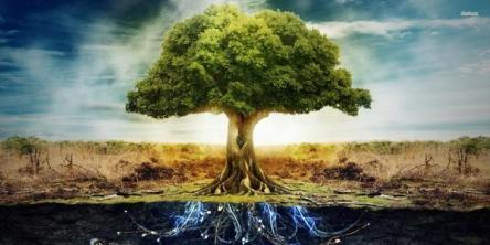 albero_della_vita_3