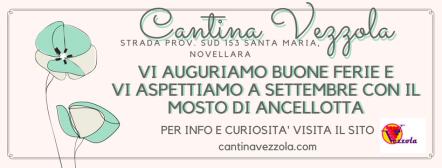 Cantina Vezzola(3)
